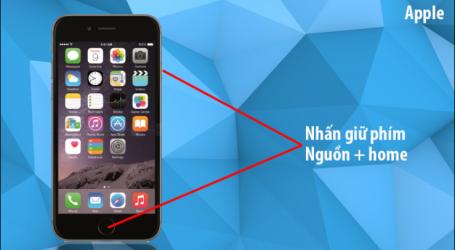 Cách chụp ảnh màn hình trên các dòng máy iPhone